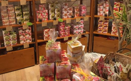 芦屋の大人気紅茶専門店/カラコル